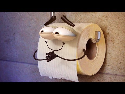 The Life of a Toilet Roll