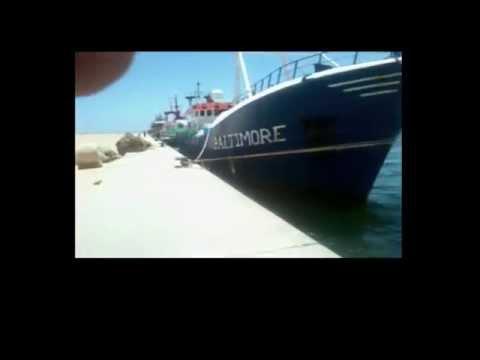 Kosmos supply vessels in occupied Western Sahara