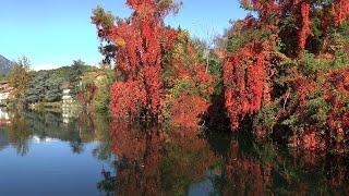 I laghi di avigliana sono a solo mezzora da torino.nel silenzio della natura puoi rilassarti e divertirti, giochi colori riflessi su acqua colline more...