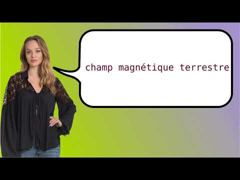 How to say 'geomagnetic field' in French?