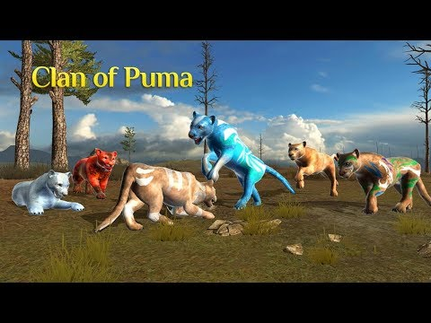 Clan Of Puma Android Gameplay HD