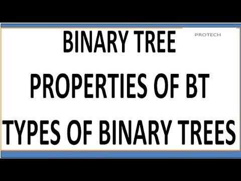 binary tree | properties of binary tree | types of binary tree