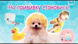 Прививка всем Детям и Собакам. Первое купание щенка.