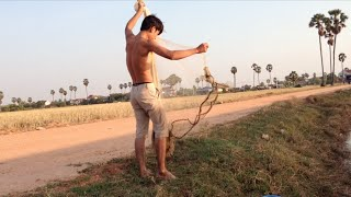 Net fishing by Khmer people near Krang Thnong Pagoda the west of Phnom Penh city