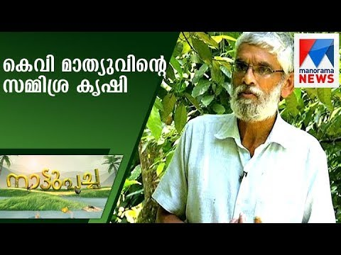 Mixed-crop cultivation in his own farm by KV Mathew | Nattupacha | Manorama News