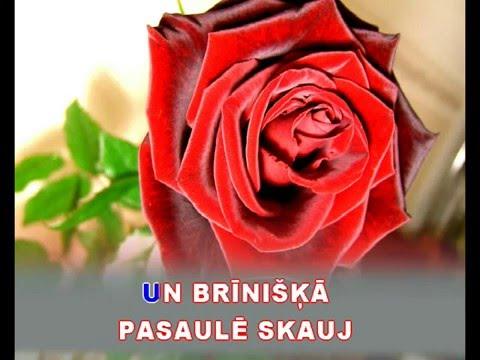 "Manas mīļākās puķes - karaoke ""Agrais rīts"" www.kar.lv"