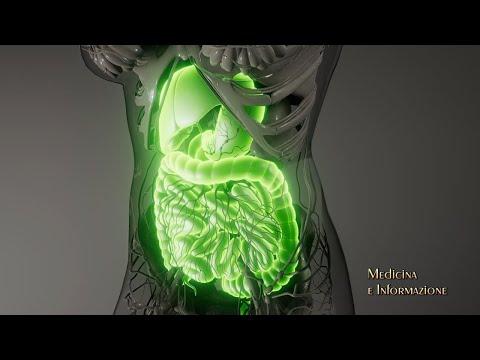 Tumori Gastrointestinali (stomaco, pancreas, colon-retto) le terapie più innovative