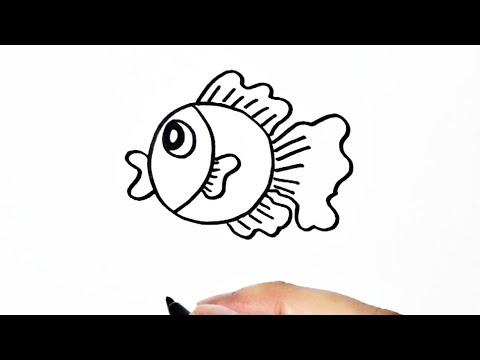 Simple Cara Menggambar Ikan Koki Dari Lingkaran Youtube