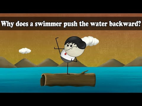 Newton's 3rd Law - Why does a swimmer push the water backward? | Smart Learning for All