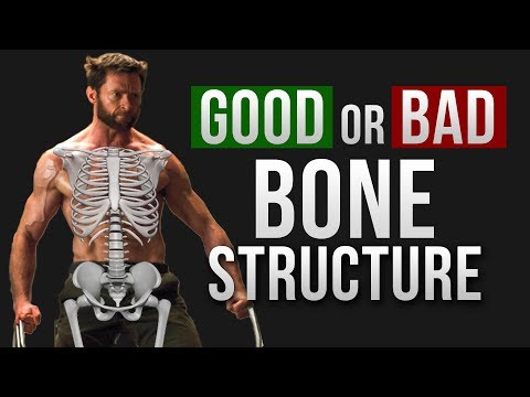 How Good is your BONE STRUCTURE | Vitruvian Model of Genetics