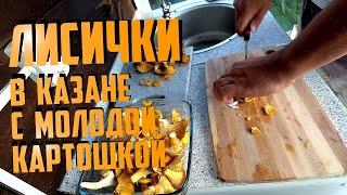 Грибы с молодой картошкой | лисички в казане