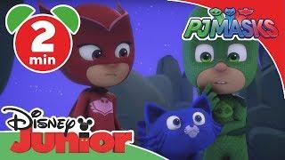 PJ Masks-Pyjamahelden - Clip: Catboy wird zur echten Katze | Disney Junior