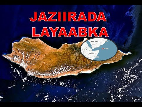 jaziirada layaabka  suqatra - socotra - #OGAANSHO