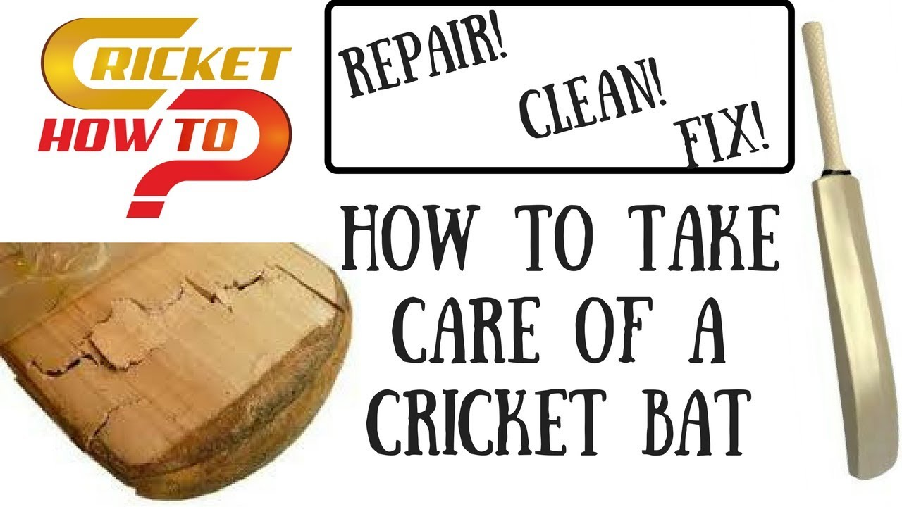 How To Repair A Bat Maintain Clean Fix