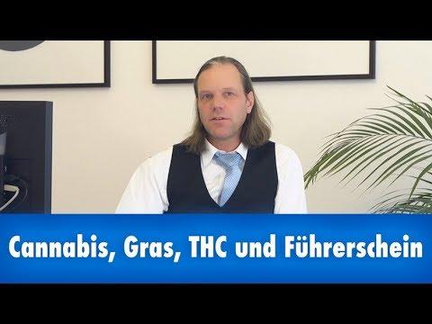Cannabis, Gras, THC und Führerschein
