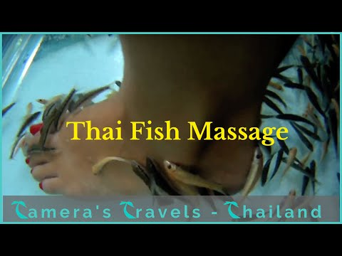 Thai Fish Massage - Pattaya Thailand - Tameras Travels