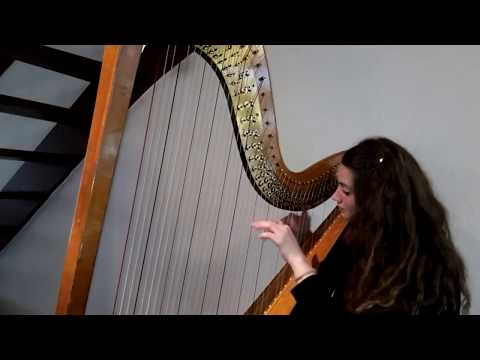 Chopin Nocturne In E Flat Major Opus 9 No. 2 Pedal Harp Cover (Sanne Bhatti-Losekoot)