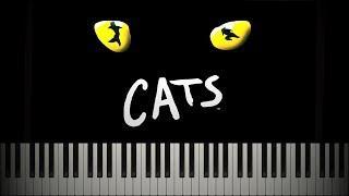memory-from-cats---andrew-lloyd-webber