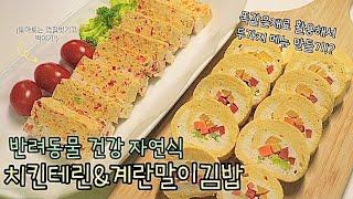 강아지 자연식 수제간식 만들기_치킨테린 & 계란…