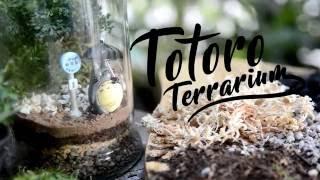 Geek's Garden: Totoro Terrarium