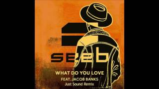 Seeb - What Do You Love feat. Jacob Banks (Just Sound Remix)