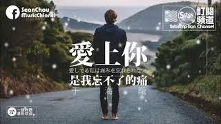 """เพลงเพราะๆ เพลงจีนแนวอกหัก - """" ความเจ็บที่ไม่เคยลืม """"  愛上你是我忘不了的痛"""