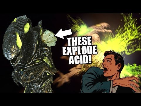 Exotic Xenomorphs: The Acid Bursting Alien from YouTube · Duration:  6 minutes 33 seconds