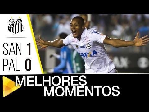 Santos 1 x 0 Palmeiras | MELHORES MOMENTOS | Brasileirão (29/10/16)