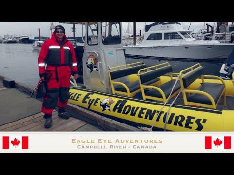Eagle Eye Adventures Orca Trip - YouTube