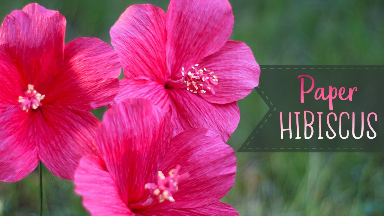 How To Make Crepe Paper Hibiscus Flowers Youtube