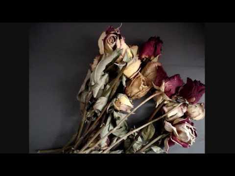 Como secar rosas - YouTube