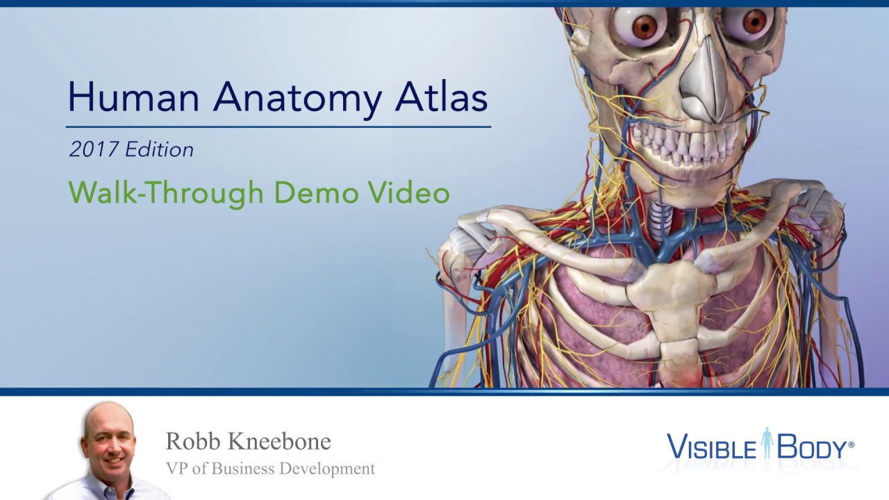 Visible Body Human Anatomy Atlas 2017 Walkthrough With Robb