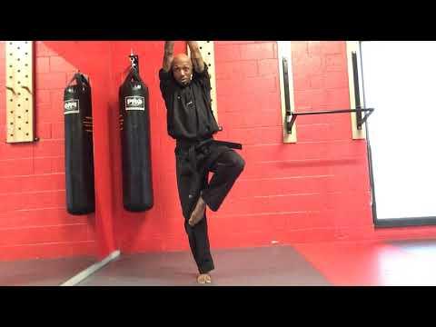 Wagon Wheel School Karate 1