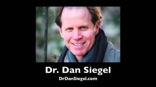 Wheel of Awareness Meditation with Dan Siegel - I AM 0132