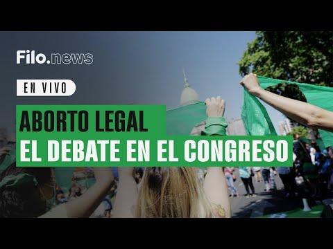 Aborto Legal y Plan de los Mil Días: Diputados aprobaron y dieron media sanción a ambos proyectos