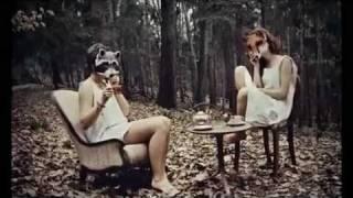 Metamorfózis  /Sade - Like A Tattoo Lyrics/