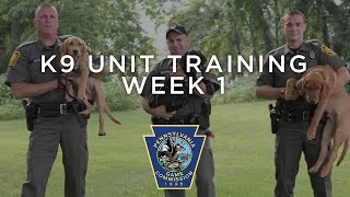 K9 Unit Training - Week One