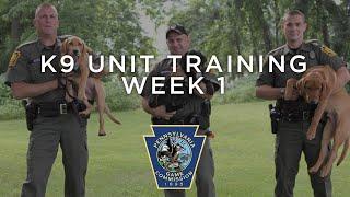 K9 Unit Training - Week One