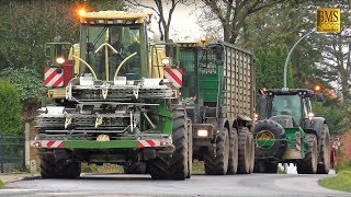 Das letzte Maisfeld  - Maishäckseln - LU Bauch Maisernte - Maize harvest Germany - farmer harvester