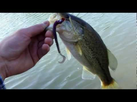 Inland Empire Secret Bass Pond: New Hike-in Fishing Spot
