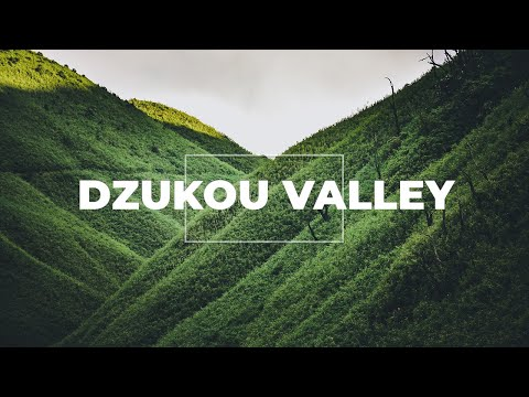 Dzukou Valley | Manipur tourism | North East India | Point Of View part 3
