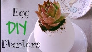 Diy Spring Egg Planters Project | Gift Idea!