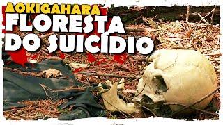 AOKIGAHARA, A FLORESTA DO SUICÍDIO | COISAS CABULOSAS LIVE ACTION