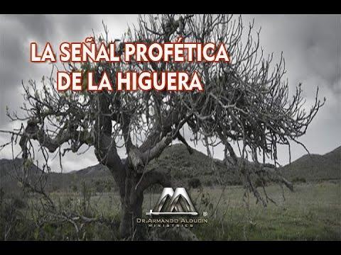 LA SEÑAL PROFÉTICA DE LA HIGUERA
