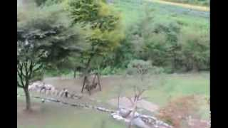 [펜션]충북펜션,청원 미원면 옥화리에 위치한 흐르는 강…