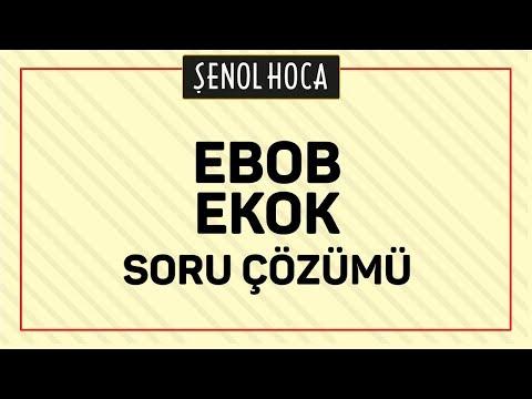 Tyt Ebob Ekok Soru çözümü Şenol Hoca Matematik
