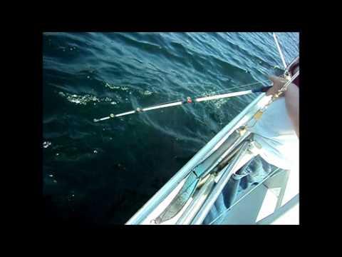 Deep Sea Fishing In Maine 2012