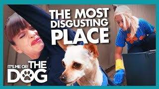 'The Most Disgusting House Ever' Makes Victoria Feel Sick | It's Me or the Dog