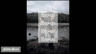 Fiersa Besari ft Prinsa Mandagie - Melawan Hati