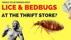 I'm Paranoid... Will The Thrift Store Give Me BEDBUGS??